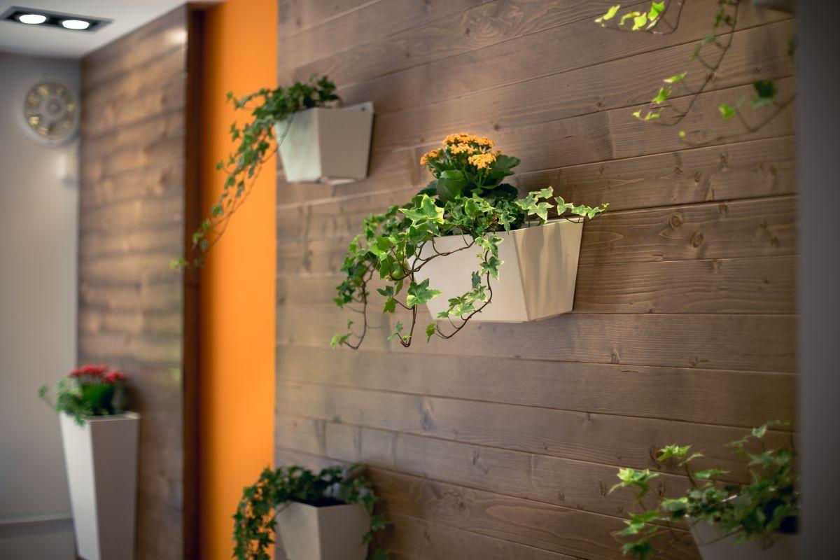 Drewno na ścianę - kwiatnik