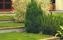 Skarpy przy tarasie i murki oporowe. Jak zaaranżować przejście między tarasem a ogrodem?