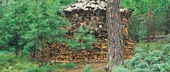 Koszty ogrzewania domu energią elektryczną, drewnem i olejem opałowym. Porównanie cen.